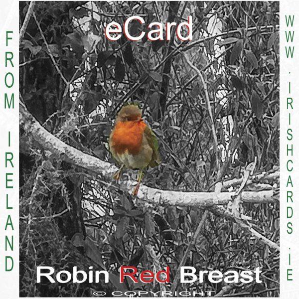 ROBIN-eCARD